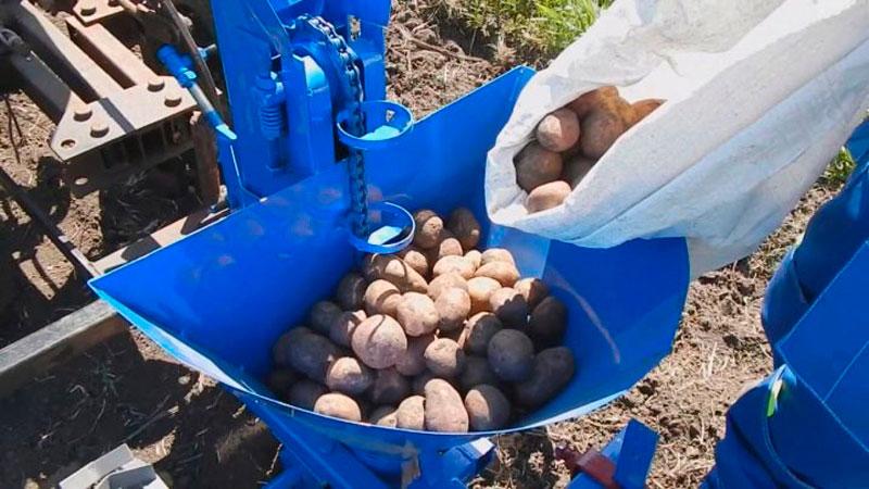 Засыпаем резервуар картофелем