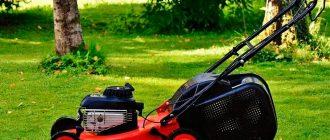 Правильный выбор газонокосилки